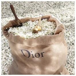 Dior Jadore Feminino Eau de Parfum 100 ml