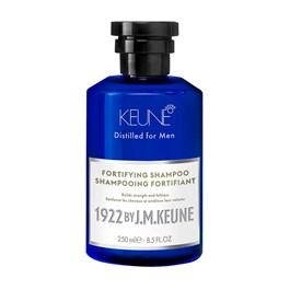 Shampoo Antiqueda Keune 250 ml Fortifying