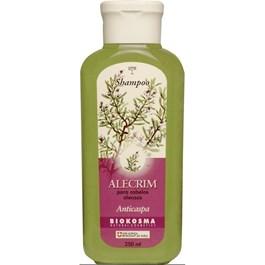 Shampoo Biokosma 250 ml Alecrim